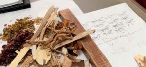 Traditionelle chinesische Arzneimittel bestehen hauptsächlich aus Kräutern und Pflanzenteilen, aber auch aus mineralischen und tierischen Stoffen. Vom Aussterben bedrohte Tiere werden von geprüften Herstellern allerdings schon lange nicht mehr verwendet.