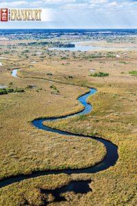 Das Okavango Delta - Wunder des Lebens