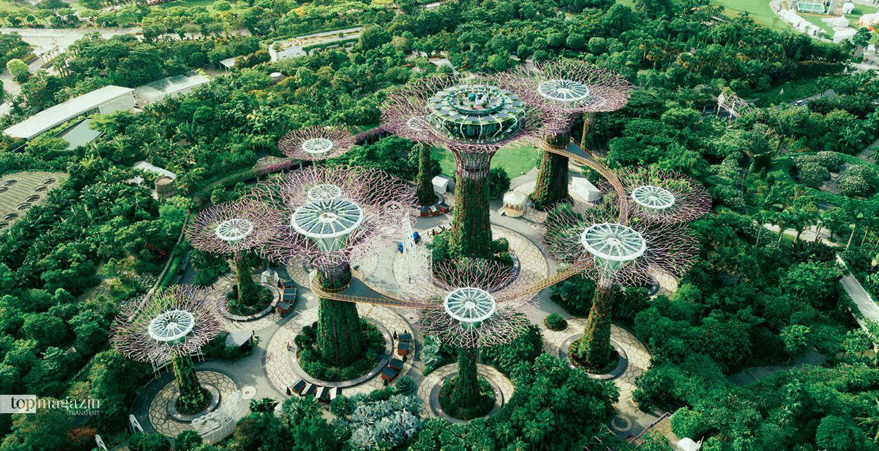 """Der gigantische Stadtpark bietet einen beeindruckenden Ausblick. Das Design ist von einer Orchidee inspiriert und ähnelt Singapurs Nationalblume, Vanda """"Miss Joaquim"""". Die riesigen Supertrees schaffen einen Wald in den Wolken."""