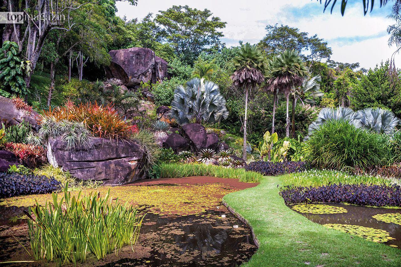 Über 4.000 Pflanzenarten finden sich in der weitläufigen Residenz Sitio Roberto Burle Marx in Rio de Janeiro und machen sie zu einer Oase in der Stadt. Eine alte Plantage aus dem 17. Jahrhundert wurde vom Landschaftsarchitekten Roberto Burle Marx zu einer einzigartigen Sammlung beeindruckender neuer Gärten und Gebäude ausgebaut.