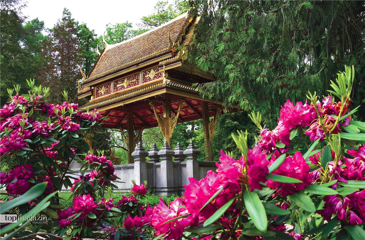 Thai-Sala im Kurpark Bad Homburg