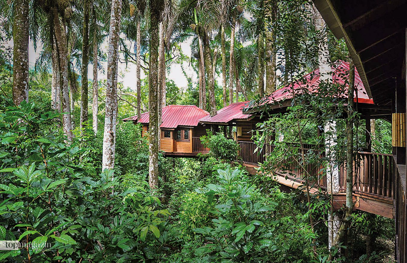 Die Eco-Lodge Rancho Platón