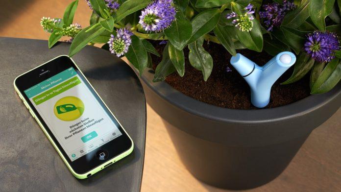 Flower Power Pflanzensensor by Parrot