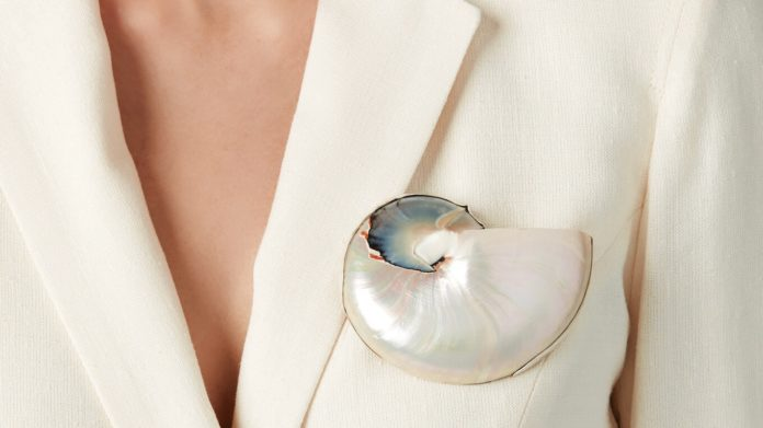 Shell Brooch by Sophie Buhai