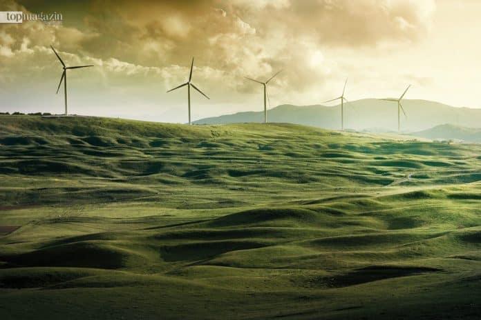 2015 sorgte die Europäische Bank für Wiederaufbau und Entwicklung (EBWE), unterstützt von Norwegen, für die Finanzierung des montenegrinischen Windparks Krnovo in Nikšić. Das erste private Stromerzeugungsprojekt des Landes und die erste große Investition in die Stromerzeugung seit den 1980er Jahren überhaupt. Heute macht der Windpark acht Prozent der gesamten installierten Stromleistung aus und trägt sechs Prozent zur Stromerzeugung in Montenegro bei. 100.000 Haushalte werden durch ihn mit Grünstrom versorgt, gleichzeitig mehr als 180.000 Tonnen CO2-Emissionen pro Jahr vermieden.