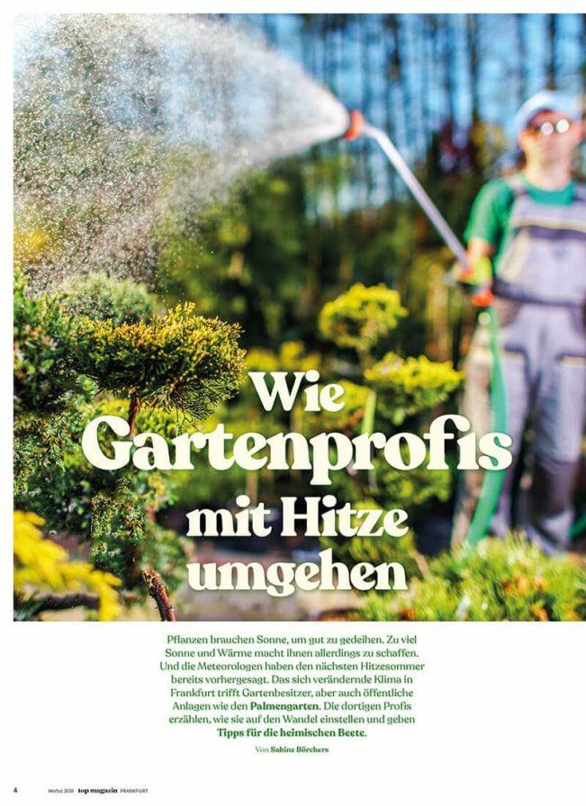 Top Magazin Frankfurt, Sommer 2020, Garten und Hitze