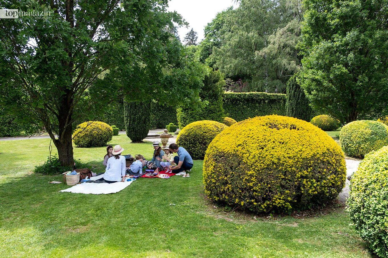 Im Rosengarten des Schlosshotels Kronberg