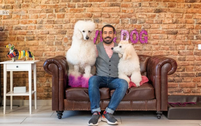 Groomer Francisco Ferreira Vasconcellos in seinem Hundesalon Bornheim mit seinen beiden Pudeln Valentino (8 Jahre) und Olivia (6 Monate)