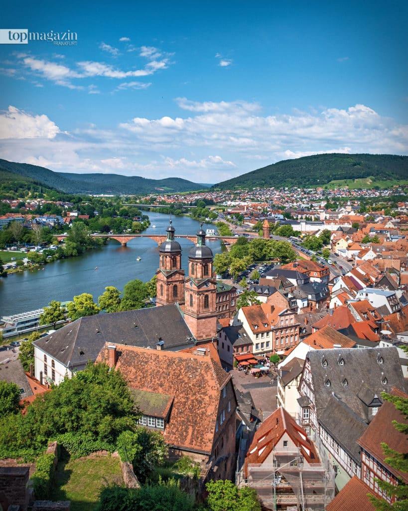 Blick auf Miltenberg und den Main von der Mildenburg, eingerahmt vom satten Grün des Odenwalds und Spessarts