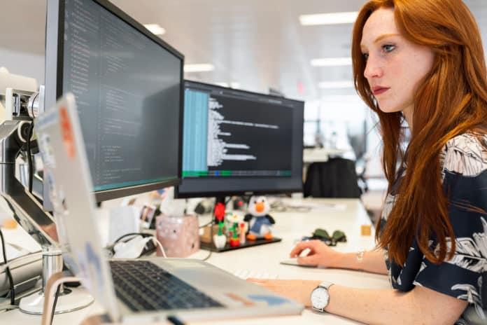 Die IT-Branche erlebt einen wahren Aufschwung